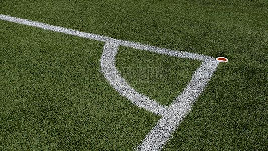 绿色草地上的白线图片