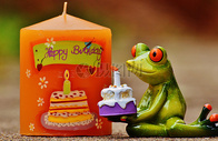 端着蛋糕的卡通青蛙图片