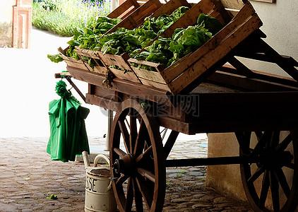 木车上的蔬菜图片