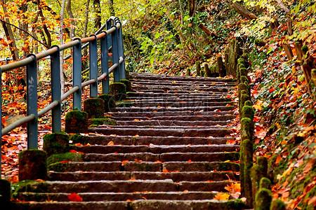 秋季落叶的阶梯图片
