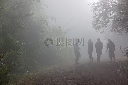 森林中雾蒙蒙的人物图片