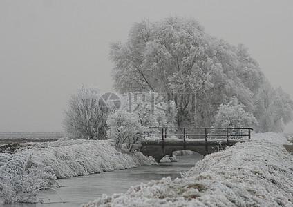冬季银装素裹的大自然图片