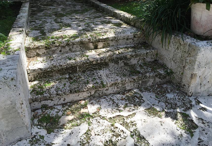 白色石头小路