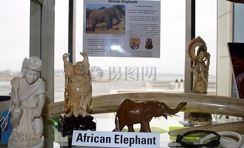 大象象牙雕刻图片