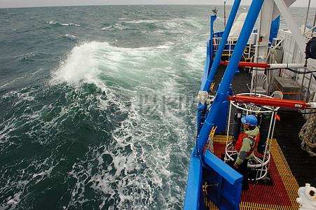 2011年8月7日看着我们进入粗糙海海角江豚,缅因州图片