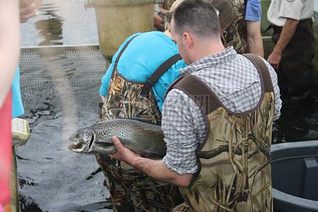 纳舒厄国家鱼类孵化场欢迎区域办事处员工图片