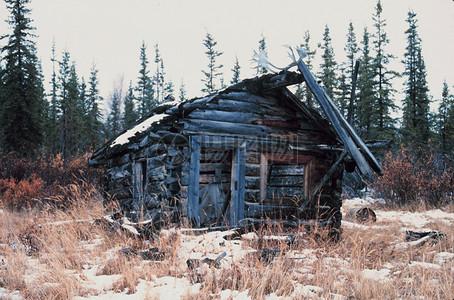 草地上斜面的木屋图片