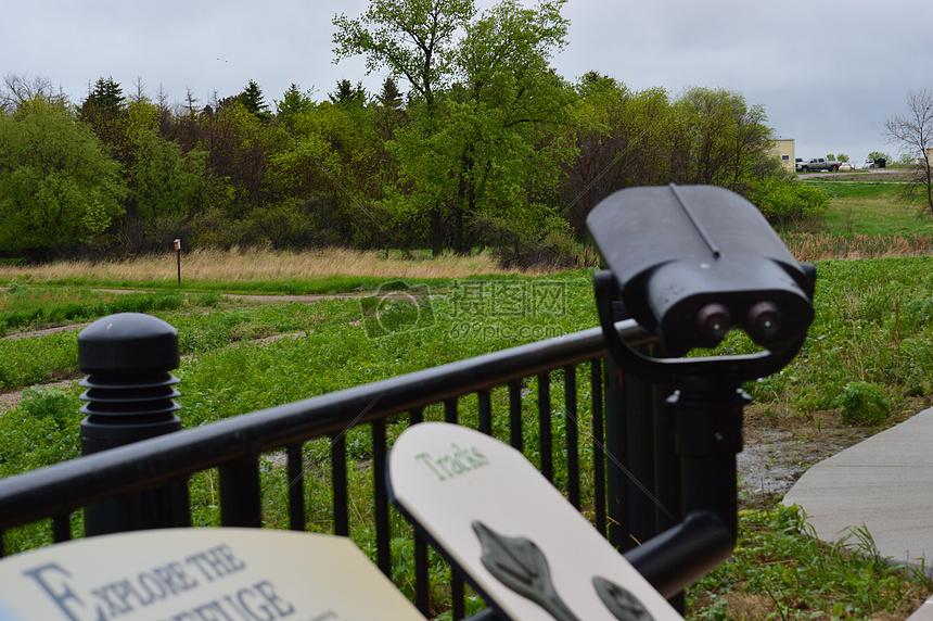 双筒望远镜观看野生动物