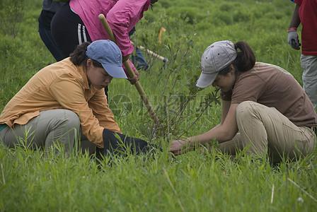 保护野生植物的志愿者图片
