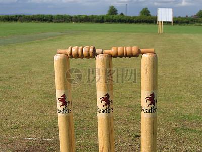 在草地上的板球比赛图片