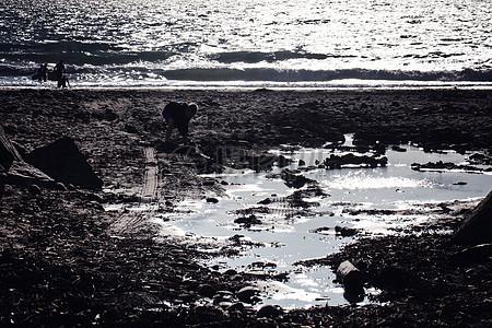 单色广阔海滩图片