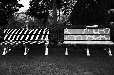 公园里的树木椅子图片