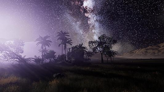 热带雨林上空的银河系的4k天体这幅图像的元素由美国宇航局提供热带雨林上空的银河系的4k天体图片
