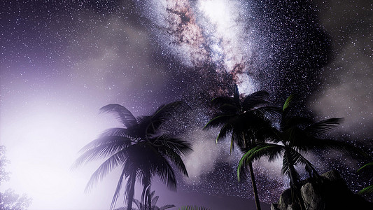 热带雨林上空银河系的天体热带雨林上空的银河系图片