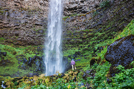 美丽的瀑布绿色森林,俄勒冈州,美国图片