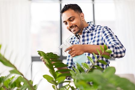 人,家务护理印度男子家里用喷水器喷洒室内植物印度男子家里用水喷洒室内植物图片