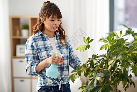 人家务护理快乐的亚洲妇女家庭主妇,用喷水器滋润家里的植物叶子快乐的亚洲女人家里喷洒室内植物图片