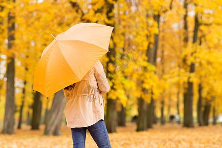 季节,雨天人们的轻的女人带着雨伞秋天的公园秋天公园里带着雨伞的轻女人图片