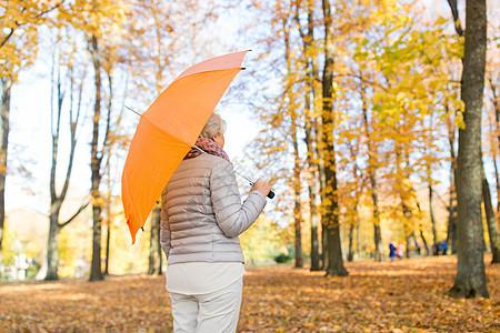 季节,雨天人的秋天公园带伞的高级女人秋天公园带伞的高级女人图片