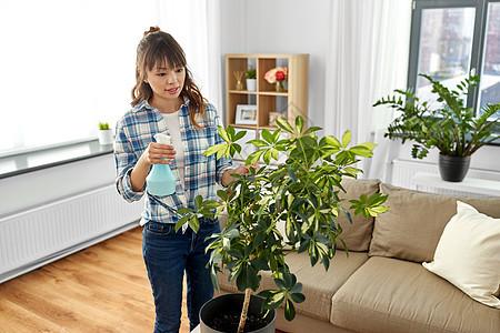 人家务护理亚洲妇女家庭主妇家用喷水器喷洒室内植物亚洲妇女家喷洒室内植物图片