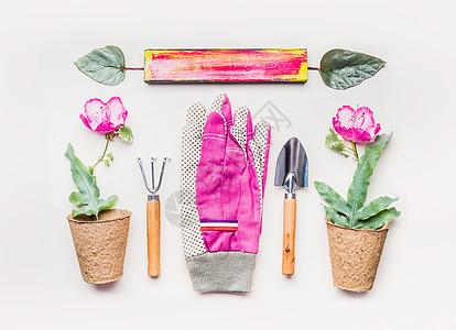 粉红色园艺设备平躺用于种植除草用园艺工具修剪花盆中的花卉幼苗白色桌子背景上的手套,俯视图图片