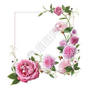 白色背景上分离出粉红色的花叶花瓣俯视图,平躺用粉红色的花框图片