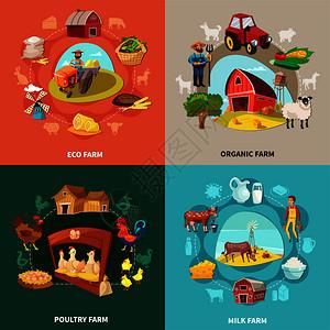 四个广场农场卡通集生态机牛奶家禽农场描述矢量插图农场卡通集图片