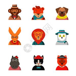 动物笑脸猴子猫袋鼠河马虎装软动物矢量猫头鹰和河马猴子猫图片