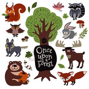 在白病媒集上孤立的树木植物元素wird森林动物狼浣熊猫头鹰和松鼠图片