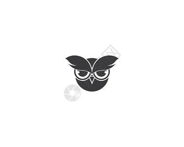 猫头鹰徽标模板矢量图插设计图片