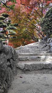喜梅吉城堡内美丽的花园秋叶图片