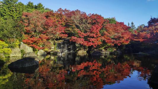 Kokoen是位于喜梅吉城堡旁边的日本花园图片