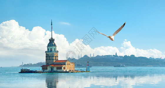 伊斯坦布尔梅登塔附近的海鸥日落伊斯坦布尔日落图片