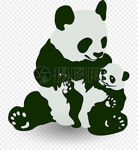 两只熊猫图片