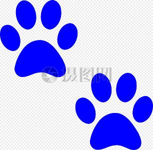 小狗的爪子高清图片