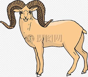 扭头的公羊图片
