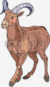 健壮的棕色公羊图片