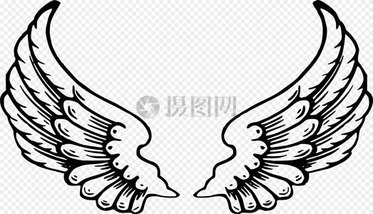 天使的翅膀图片