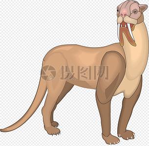 长獠牙的古代猫科动物图片