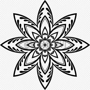 黑色精美花朵图片