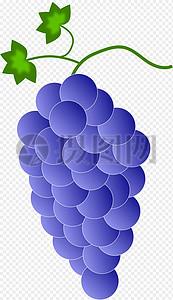 紫罗兰色葡萄图片
