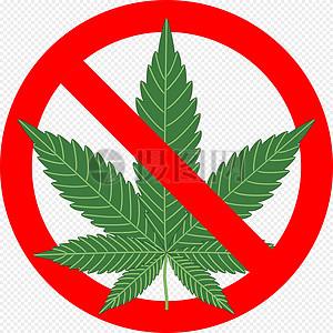 禁止大麻叶植物图片