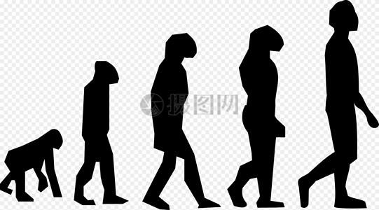 演化, 走, 查尔斯 · 达尔文, 科学图片