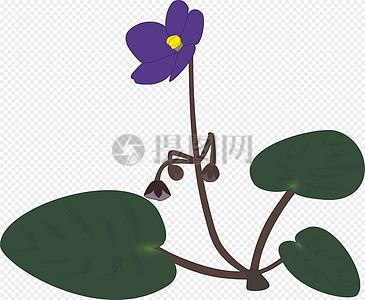 紫罗兰色图片