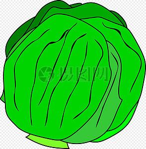 绿色大头菜图片