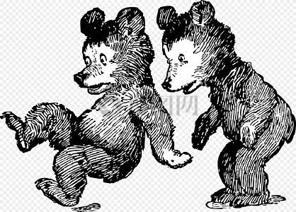 玩耍的两只熊图片