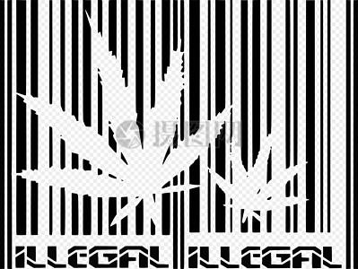 两片大麻叶子图片