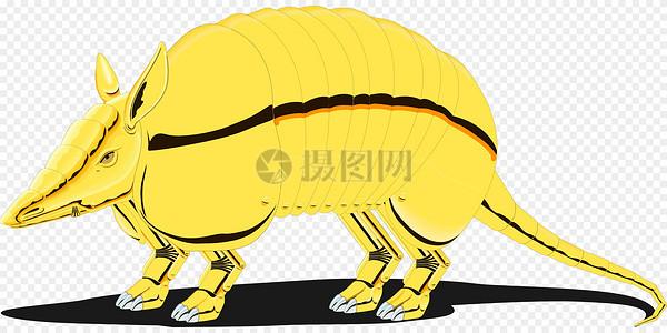 金色的犰狳图片