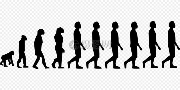 演化, 查尔斯 · 达尔文, 男子图片