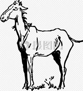 瘦弱的马匹图片